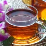 【美容とダイエットに】紅茶キノコの効果とコンブチャって?