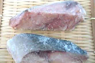 魚の冷凍保存