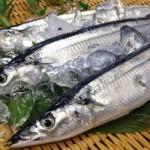 【美肌やアンチエイジングにも】旬の秋刀魚の驚くべき効果