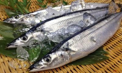 秋刀魚の効果