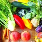 【野菜を食べよう】活性酸素を除去する色野菜はコレ!
