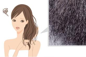 髪の毛老化