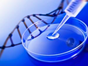 DNA検査とは