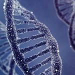 オミックス医療で病気を予防!DNA検査の効果