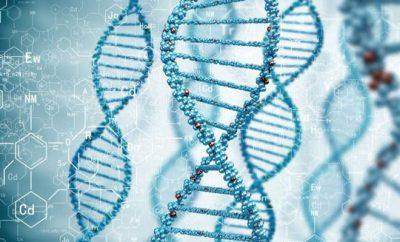 遺伝子検査ダイエット