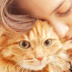 ミドリムシの犬や猫などペットへの効果 癌も治る?